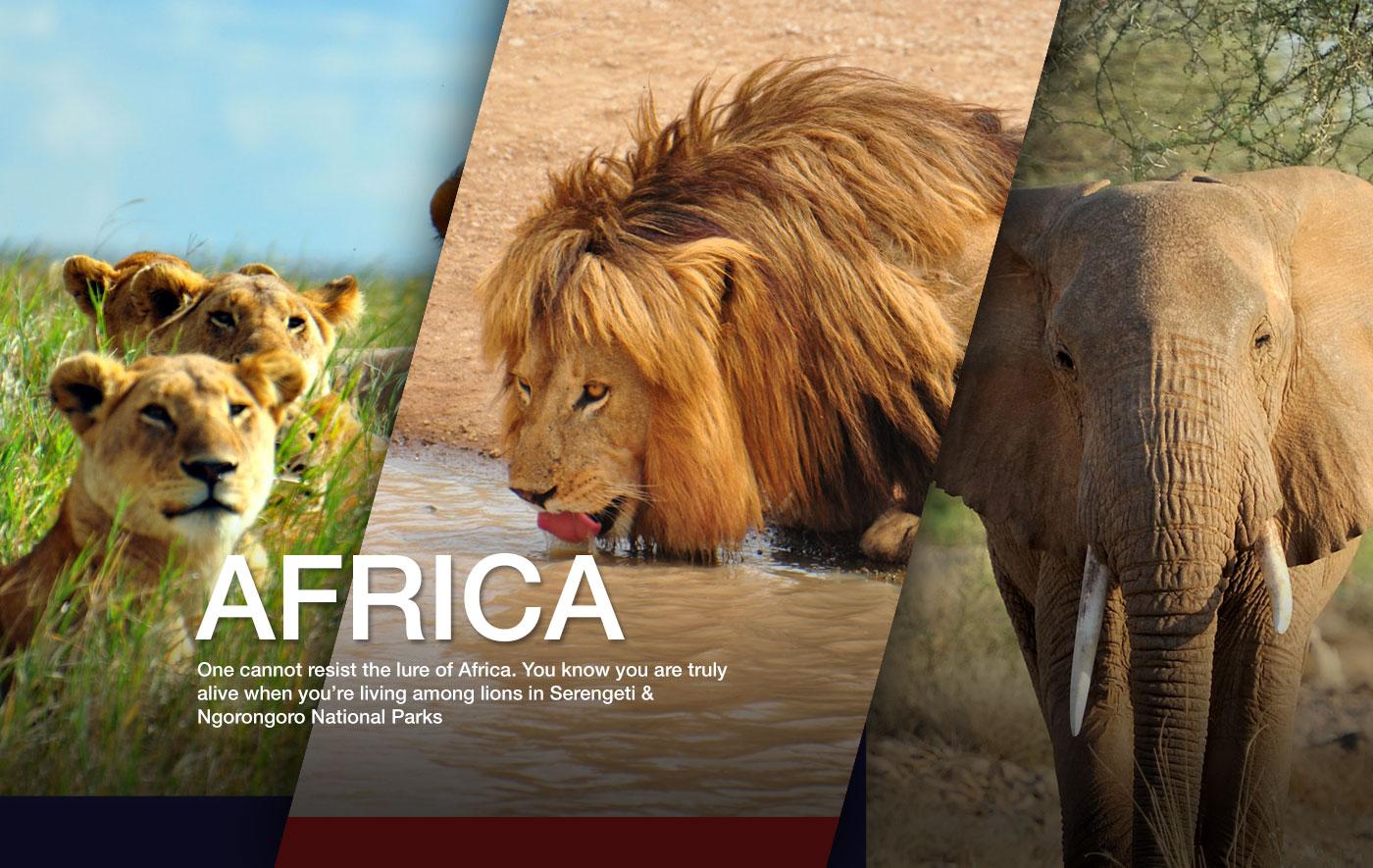 africa-tour